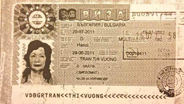 vietnamese diplomat
