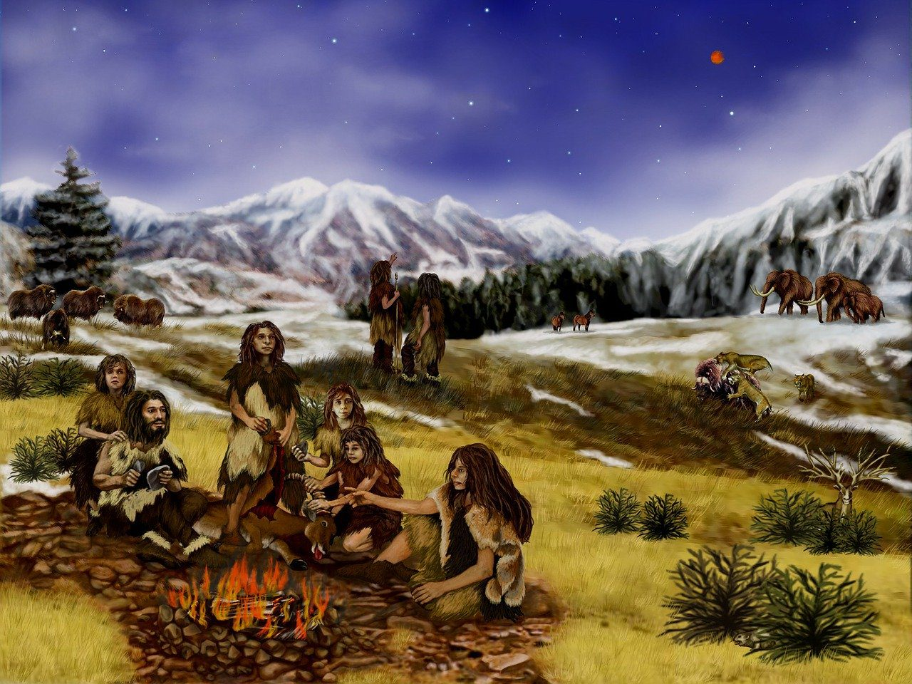 Neandertal insan